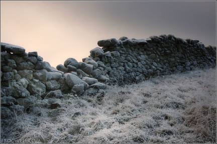 Stone wall on Crappich Hill.