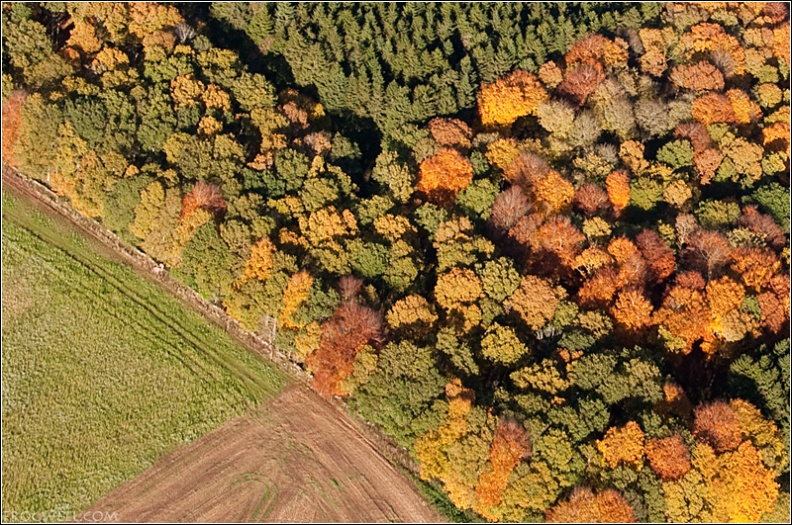 Autumn colours from the air near Stirling.jpg